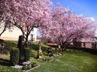 Ostern 2021 in St. Vitus Sailauf (15)