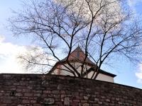 Vituskirche Sailauf